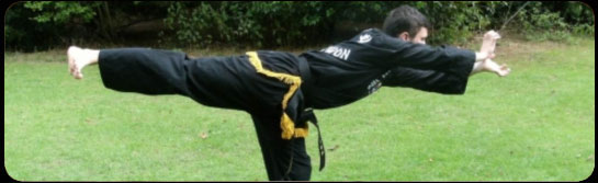 Kuk Sool martial arts training